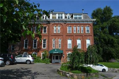 Ossining Condo/Townhouse For Sale: 2 North Water Street #2C