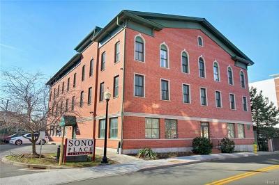 Connecticut Condo/Townhouse For Sale: 16 Ann Street #21
