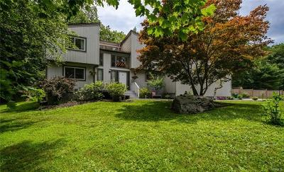 Stormville Single Family Home For Sale: 205 Cross Road
