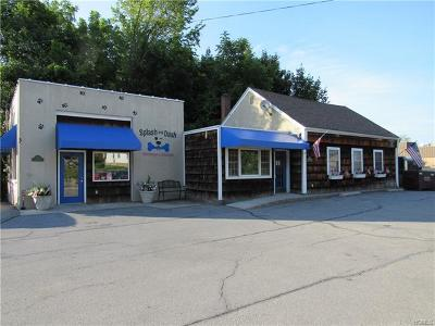 Monroe Commercial For Sale: 14 Lakes Road