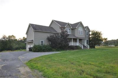 Blooming Grove Single Family Home For Sale: 3 Dristin Drive