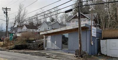 Sullivan County Commercial For Sale: 489 State Route 52