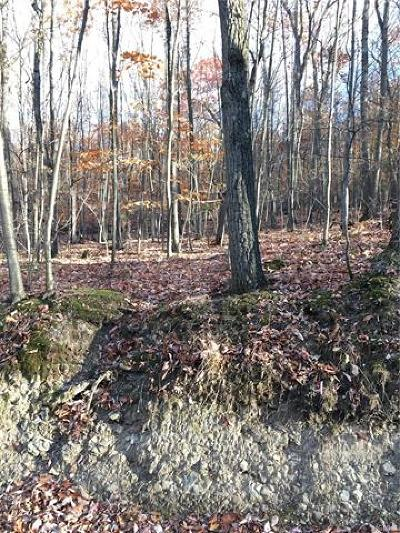 Warwick Residential Lots & Land For Sale: 203 Cascade Road