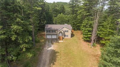 Dutchess County, Orange County, Sullivan County, Ulster County Single Family Home For Sale: 2409 State Route 209