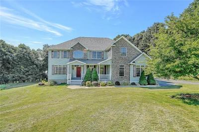 Lagrangeville Single Family Home For Sale: 4 Jude Drive