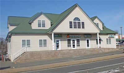 Stony Point Commercial For Sale: 7 Joyce Plaza