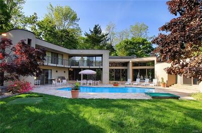 Armonk Single Family Home For Sale: 20 Cole Drive