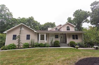 Dutchess County Single Family Home For Sale: 76 Booth Boulevard West