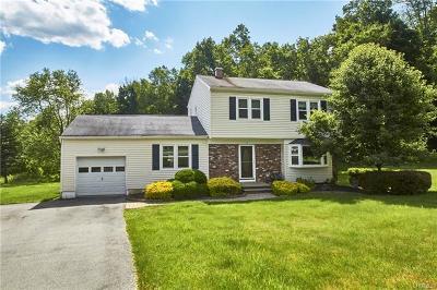 Washingtonville Single Family Home For Sale: 3 Rera Court
