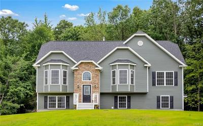 Washingtonville Single Family Home For Sale: 45 Mel Drive