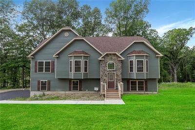 Washingtonville Single Family Home For Sale: 61 Mel Drive