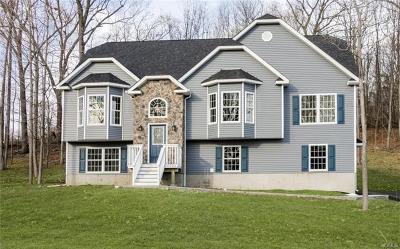 Washingtonville Single Family Home For Sale: 85 Mel Drive