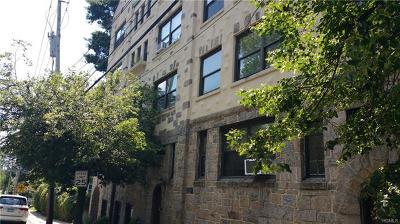 Larchmont Rental For Rent: 34 Vanderburgh Avenue #4D