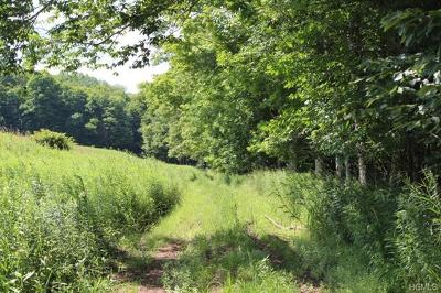 Livingston Manor NY Residential Lots & Land For Sale: $199,000