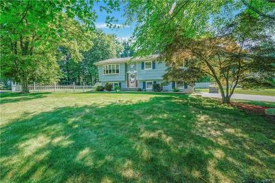 Suffern Single Family Home For Sale: 8 Ashwood Drive