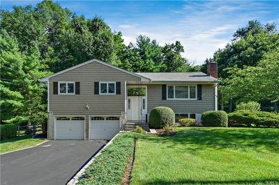 Westchester County Single Family Home For Sale: 13 Downey Road