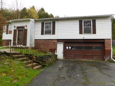 South Fallsburg Single Family Home For Sale