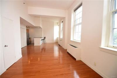Westchester County Condo/Townhouse For Sale: 5302 Villa At The Woods