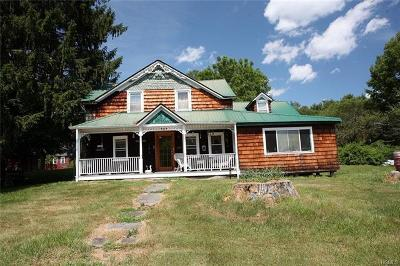 Callicoon Single Family Home For Sale: 4100 State Route 17b