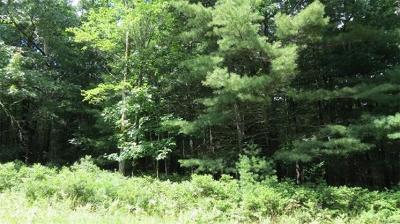 Narrowsburg Residential Lots & Land For Sale: Lot #10 Francis Drive