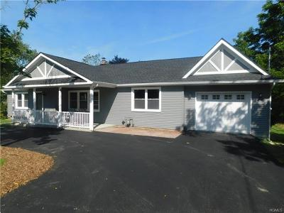 Goshen Single Family Home For Sale: 399 Main Street