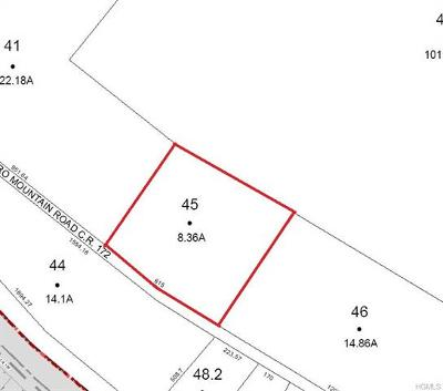 Rock Hill NY Residential Lots & Land For Sale: $42,500