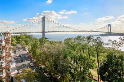 Brooklyn Condo/Townhouse For Sale: 9511 Shore Road #212