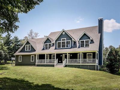Orange County Single Family Home For Sale: 53 Horizon Farms Drive
