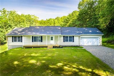Dover Plains Single Family Home For Sale: 290 Hammond Hill Road
