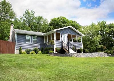 Single Family Home For Sale: 244 Minisink Turnpike