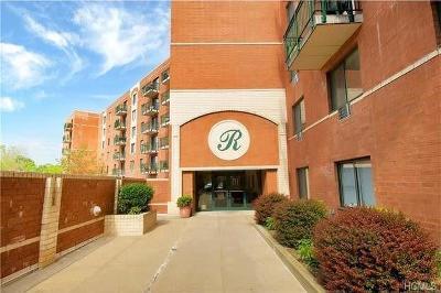 Mamaroneck Rental For Rent: 123 Mamaroneck Avenue #308