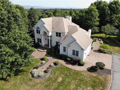 Walden Single Family Home For Sale: 59 Rapelje Road