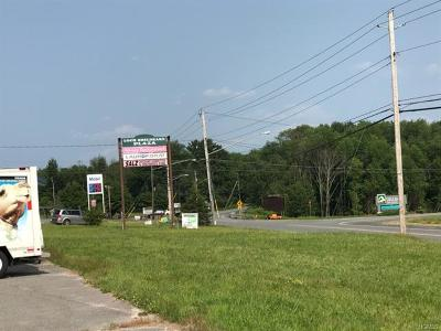 Fallsburg Commercial For Sale: 1302-1308 State Route 52
