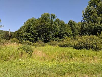 Jeffersonville NY Residential Lots & Land For Sale: $34,900