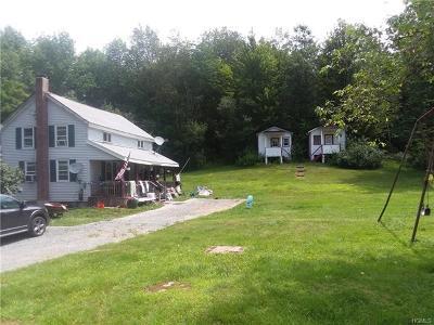 Fallsburg Multi Family 2-4 For Sale: 170 Houghtaling Road