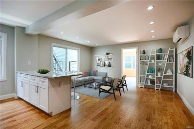 Westchester County Rental For Rent: 349 Mount Pleasant Avenue #2L