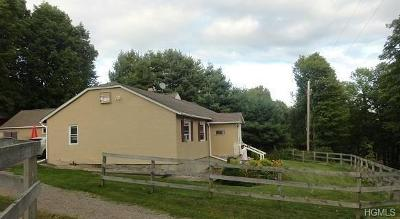 Ellenville NY Rental For Rent: $1,050