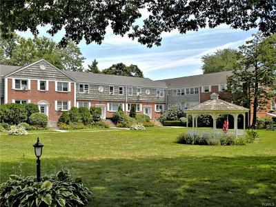 Mamaroneck Rental For Rent: 905 Palmer Avenue #E1
