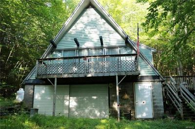Delaware County Single Family Home For Sale: 90 Blaise Road