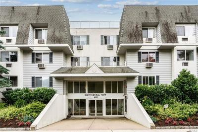Mamaroneck Rental For Rent: 1035 East Boston Post Road #2-6