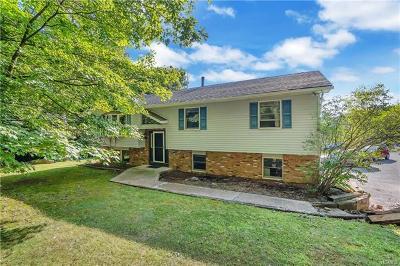 New Windsor Single Family Home For Sale: 369 Chestnut Avenue