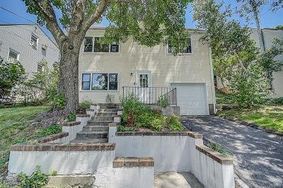 Single Family Home For Sale: 74 South Hillside Avenue