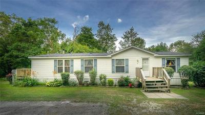 Pine Bush Single Family Home For Sale: 17 Schwab Lane