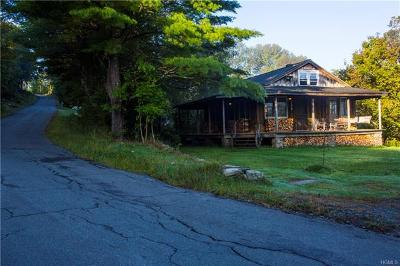Sullivan County Single Family Home For Sale: 299 Rose Road