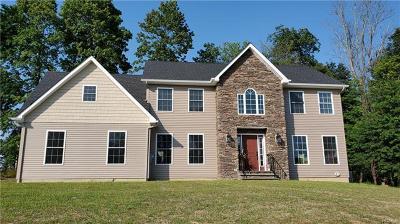 Goshen Single Family Home For Sale: 18 Robalene Drive