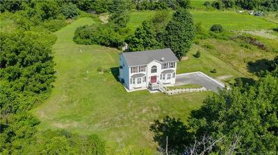 Goshen Single Family Home For Sale: 16 McNamara Lane