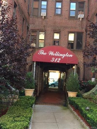White Plains Condo/Townhouse For Sale: 312 Main Street #5G