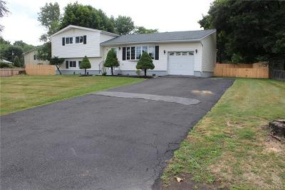 New Windsor Single Family Home For Sale: 6 Marshall Drive East