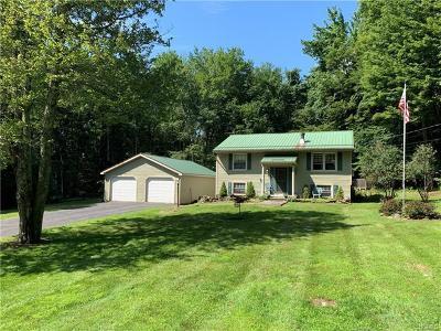 Neversink, Grahamsville, Denning Single Family Home For Sale: 61 Hall Road