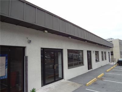 Commercial For Sale: 77 Lafayette Avenue